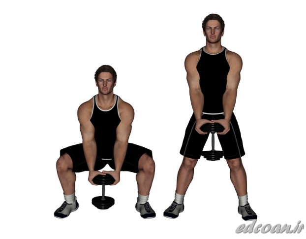 Dumbbell-Standing-Squat-Between-Legs-.jpg (622×485)