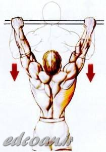 Wide-Grip-Pull-Up-210x300.jpg (210×300)
