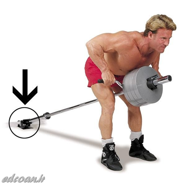 bent-over-t-bar-row.jpg (600×600)