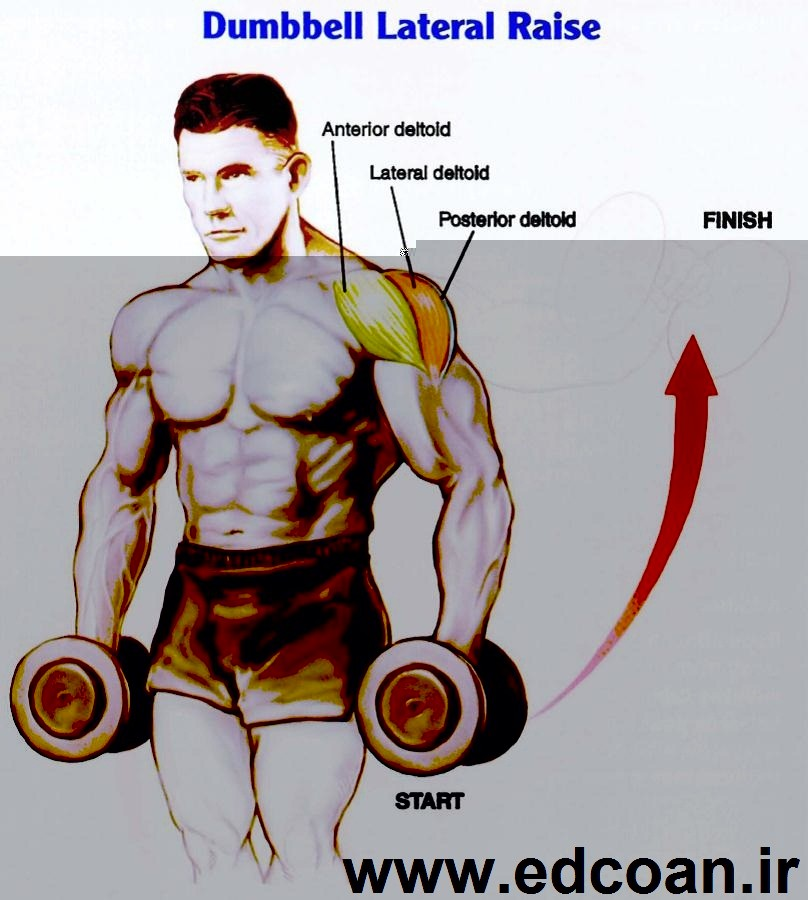 DUMBELL-LATERAL-RAİSE