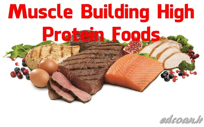 Protein Intake Per Day For Muscle Building
