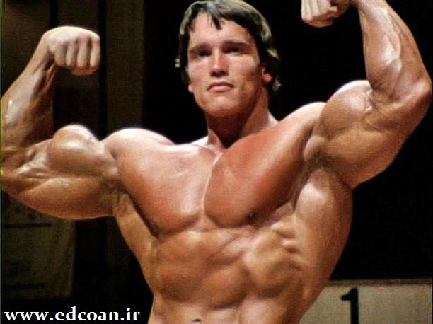 ARNOLD-MUSCLES