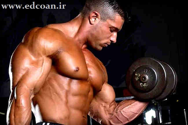 Bodybuilding-Exercises_7