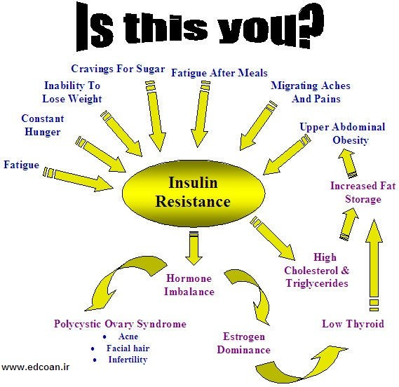 Insulin-Res