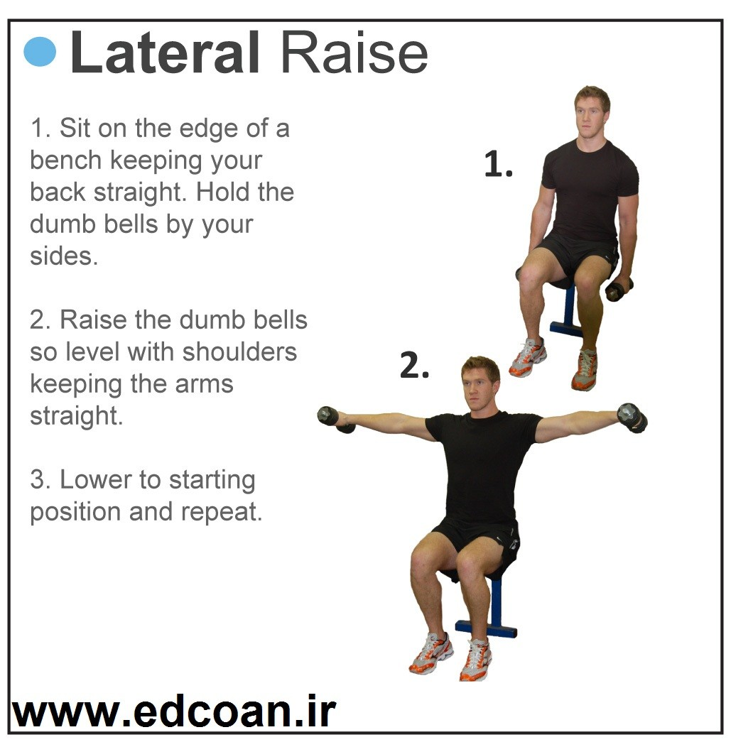 Lateral_raise_bench
