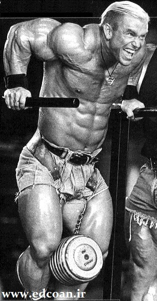 Lee-priest