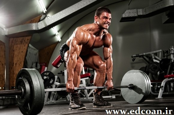 powerlifting-e1356474144648