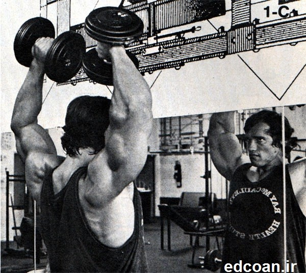 style-Arnold-Schwarzenegger-history-gold-gym-training-triceps-shoulders-img